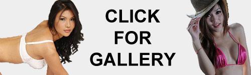 Ladyboy Gallery